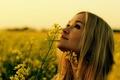 Картинка лето, цветы, девушка, поле, природа