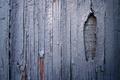 Картинка доски, забор, краска