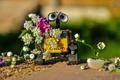 Картинка лето, цветы, WALL-E, ВАЛЛ-И