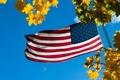 Картинка флаг, небо, листья