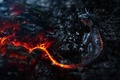 Картинка дракон, dragon, арт, огонь