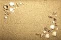 Картинка beach, texture, sand, marine, seashells, песок ракушки
