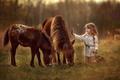 Картинка девочка, друзья, настроение, пони, ребенок