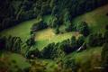 Картинка лето, деревья, склоны, природа