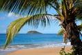 Картинка остров, природа, берег, море, скала, пальма, небо, тропики