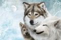 Картинка луна, семья, хищники, волки