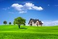 Картинка поле, лето, небо, трава, облака, деревья, пейзаж, природа, дом, дерево, домик, summer, house, grass, sky, ...