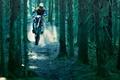 Картинка Dirt bike, лес, деревья, земля