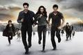 Картинка Saga Breaking, Dawn Part 2, The Twilight, summit, Part 2, Cullen, entertainment, hd wallpaper, movies, ...