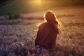 Картинка широкоэкранные, HD wallpapers, обои, брюнетка, пшеница, девушка, поле, рожь, полноэкранные, солнце, лучи, широкоформатные, настроения, фон, ...