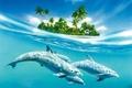 Картинка 155, дельфины, вода, остров