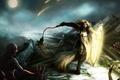 Картинка девушка, свет, горы, оружие, луна, арт, щит, Diablo III, доспех, рана, враги, Reaper of Souls, ...
