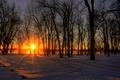 Картинка winter, mist, Ontario, glow, fog, ray, trees, Canada, city, Quebec, island, snow, river, morning, sunrise