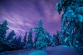 Картинка сугробы, снег, зима, деревья, Лапландия, Finland, Финляндия, Lapland, лес