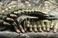 Картинка видов, патроны, ammunition, потрантаж, двух, wallpaper., размытость, боке, снаряжение, амуниция, боеприпасы, камуфляж