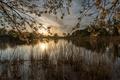 Картинка Германия, озеро, закат, North Rhine-Westfalia, Dulmen