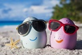 Картинка eggs, glasses, happy, beach, funny, cute, summer, tropical