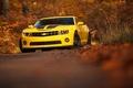 Картинка camaro, chevrolet, yellow, autumn