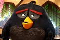 Картинка powerful, series, 2016, Angry Birds, film, cinema, straw, deredere, subarashii, expectation, animation, kuwaii, moe, game, ...