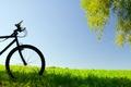 Картинка велосипед, широкоэкранные, колесо, HD wallpapers, обои, листья, дерево, зелень, полноэкранные, background, fullscreen, широкоформатные, настроения, фон, ...