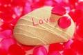 Картинка камень, лепестки, любовь, признание
