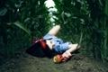 Картинка поле, девушка, фон, земля, обои, яблоко
