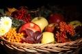 Картинка цветы, яблоки, фрукты, облепиха, корзина, осень, листья