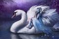 Картинка Bente schlick, germany, фея, ночь, лебедь