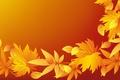 Картинка листики, осень, текстура
