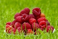 Картинка лето, ягоды, малина