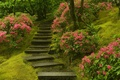Картинка Японский сад , лестница , растения