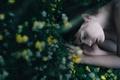 Картинка цветы, макияж, отдых, девушка, трава, сон