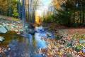 Картинка камни, листва, река, разноцветная, деревья, осень, лес
