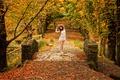 Картинка Cassie, парк, Colour of my Dreams, осень
