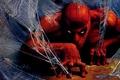 Картинка artwork, superhero, Peter Parker, spiderwebs, costume, fantasyart, Spider Man, comics, Marvel, drawing, fantasy