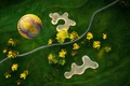 Картинка вечер, Воздушный шар, свет, вид, деревья, сверху