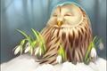Картинка зима, снег, цветы, сова, арт, подснежник, совёнок