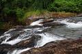 Картинка пороги, лес, поток, деревья, река, камни