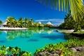 Картинка пальмы, paradise, vacation, beach, palms, sunshine, пляж, sea, море, лагуна, summer, tropical, ocean, тропики