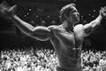 Картинка мужик, актер, спортсмен, Актер, Арнольд Шварценеггер, Продюсер, Режиссер, Arnold Schwarzenegger