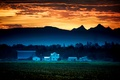 Картинка fog, sunrise, farmland