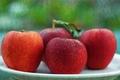 Картинка стиль, яблоки, фон
