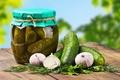 Картинка зелень, укроп, банка, овощи, петрушка, огурцы, чеснок, маринованные, разносол, закатка