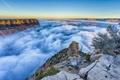 Картинка туман, восход, утро, Аризона, Гранд каньон