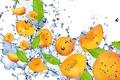Картинка fruit, фрукт, spray, брызги, абрикос, drops, вода, свежесть, orange, оранжевый, water, Apricot, капли