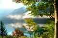 Картинка утро, озеро, отражение, горы, туман, деревья, лес