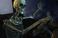 Картинка skull, bones, sitting, pose
