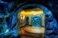 Картинка мозаика, скала, дом, осьминог, пещера, подводное, жилище