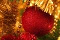 Картинка праздник, шары, елка, мишура