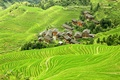 Картинка Китай, поля, плантации, домики, вид сверху, зелень